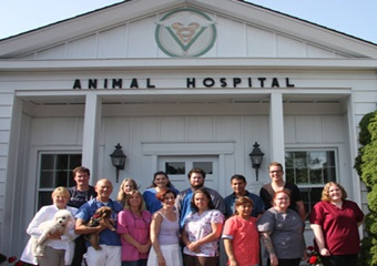 east hampton veterinary group pet friendly hamptons veterinarian